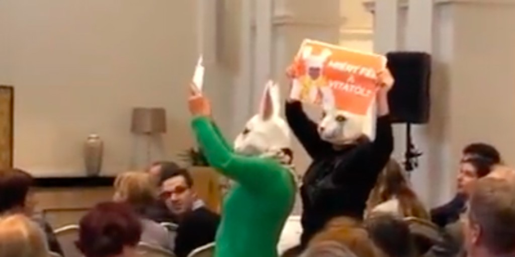 Karácsony Gergely aktivistái nyúl jelmezbe öltözve