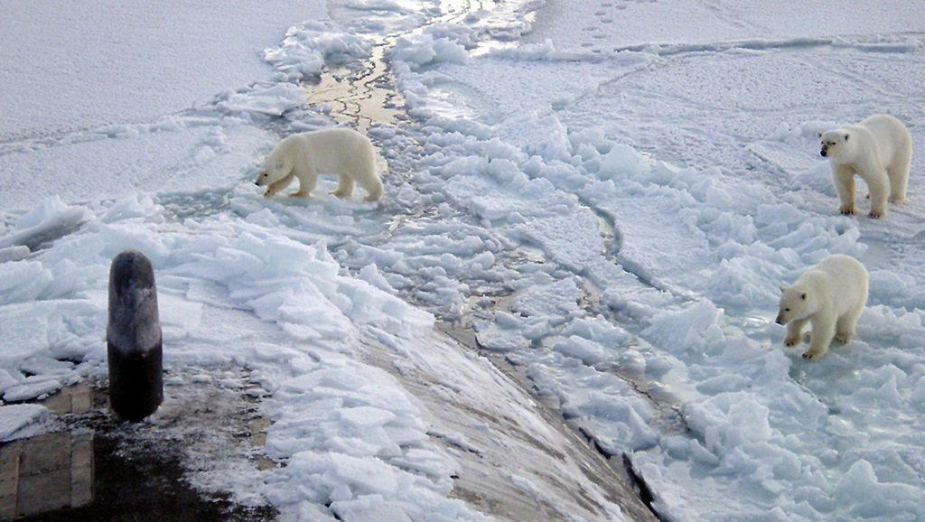 klímaváltozás, Arktisz
